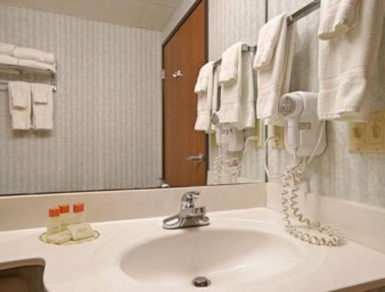 Americas Best Value Inn & Suites, Sunbury/Delaware,Ohio: Bathroom