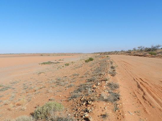 Arid Areas Day Tours: A claypan, along the road to Lake Eyre.
