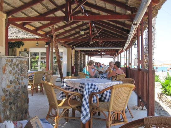 Inside Blue Phoenix at lunch time