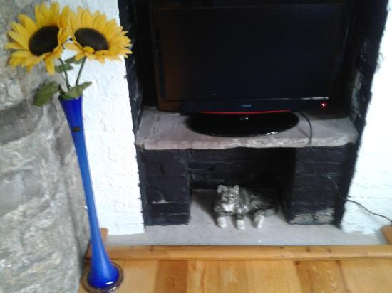 Ty Gwyn: Fireplace and TV