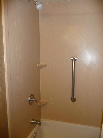 Hampton Inn & Suites Orlando - John Young Pkwy / S Park: Bathroom
