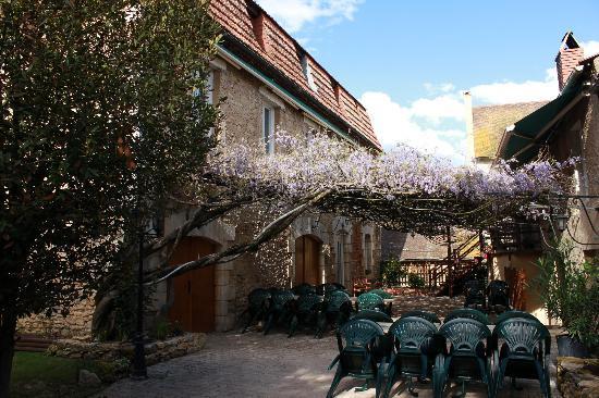 Le Trefle A Quatre Feuilles: Terrasse couverte et glycine