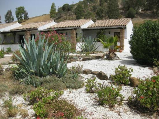 Cortijo Valverde: View from the pool to outside rooms