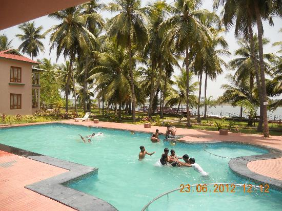 Swimming Pool Picture Of Haritha Coconut Country Resort Aptdc Kakinada Tripadvisor