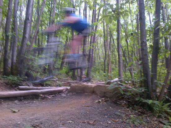 Bedgebury National Pinetum and Forest: Getting air on the black section