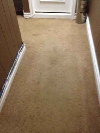 فيكتورياس مانشن جست هاوس: Stained carpet in the corridor 