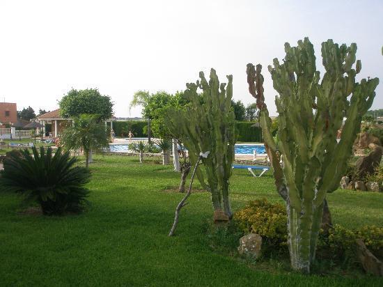 Hotel Diufain: Zona verde detras de la piscina