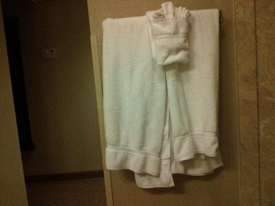 هوليداي إن إيست وندسور: Towels as they were hung by maid. 