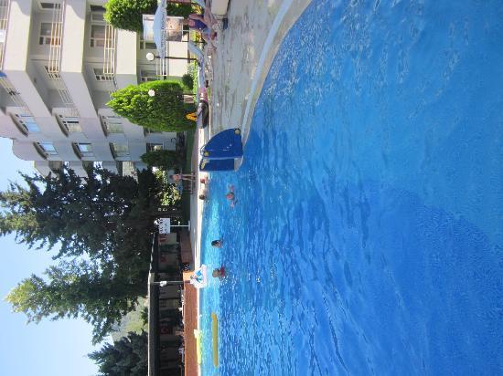 Turkiz Apart Hotel : Pool