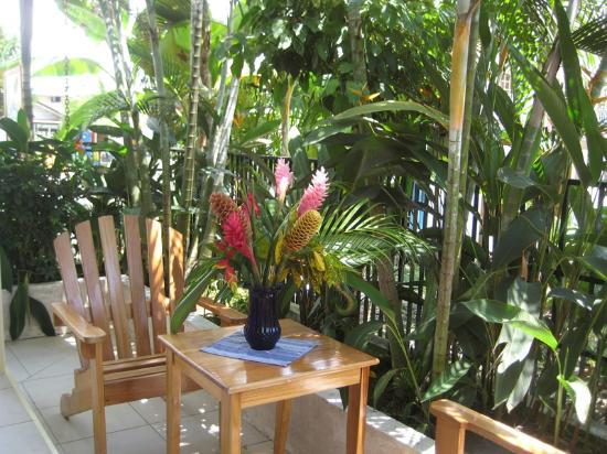 Hotelito Del Mar: Reception - Breakfast Patio Area