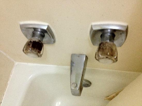 Luxury Inn and Suites: Very dirty shower knobs and shower tub itself, ewe!