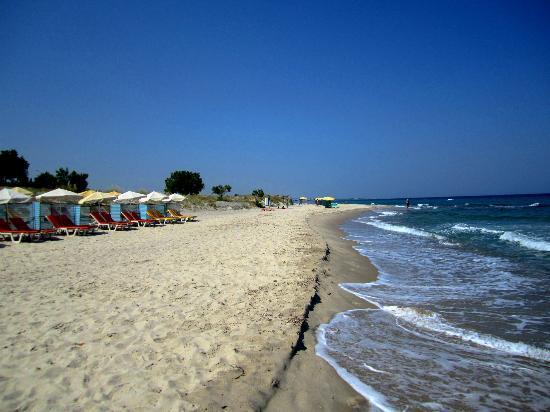 Sandy Beach Hotel & Family Suites: Strand vor dem Hotel