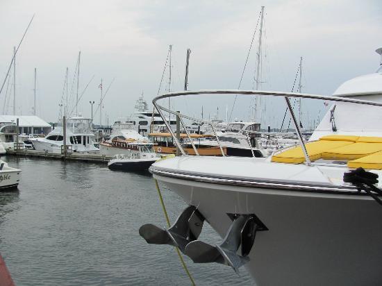 Bowen's Wharf Marina