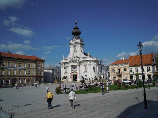 Family Home of John Paul II: La cattedrale di Wadowice