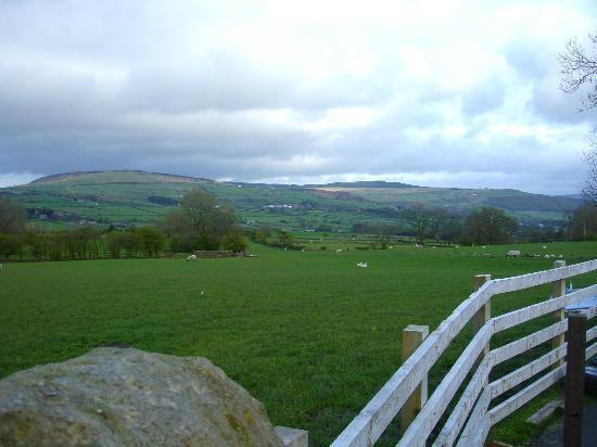 Pickersgill Manor Farm Bed and Breakfast : Amazing view