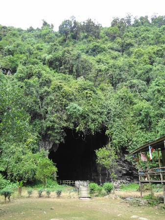 Gomantong Cave Sandakan: Gomantong Cave
