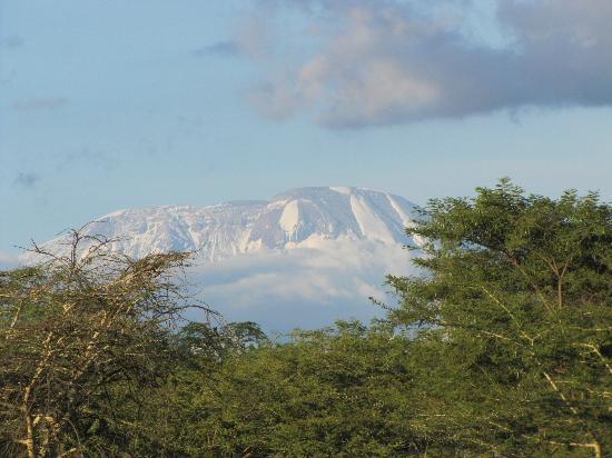 Arumeru River Lodge: Terassenblick Kilimanjaro