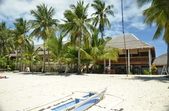 Ocean Vida Beach & Dive Resort: Beach..