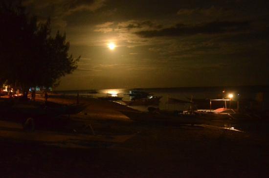 Ocean Vida Beach & Dive Resort: Full moon shot at night..