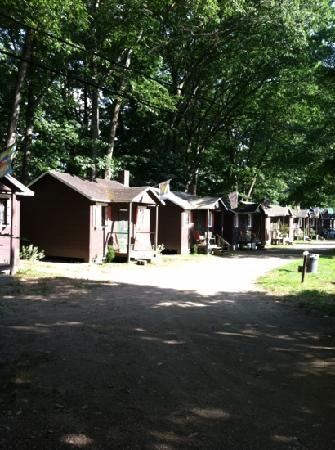 Maple Lodge Cabins and Motel: the view of the cabins from Motel room