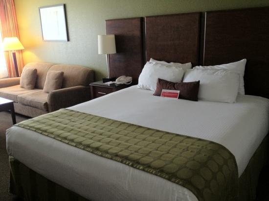 Ramada San Diego North Hotel & Conference Center: king bed