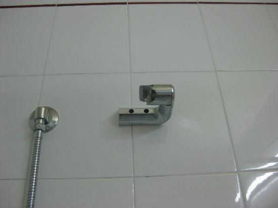 Hotel Park : Shower head holder