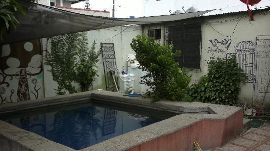 Funky monkey hostal desde guayaquil ecuador opiniones y comentarios hostal - Hostal casa tere guadarrama ...