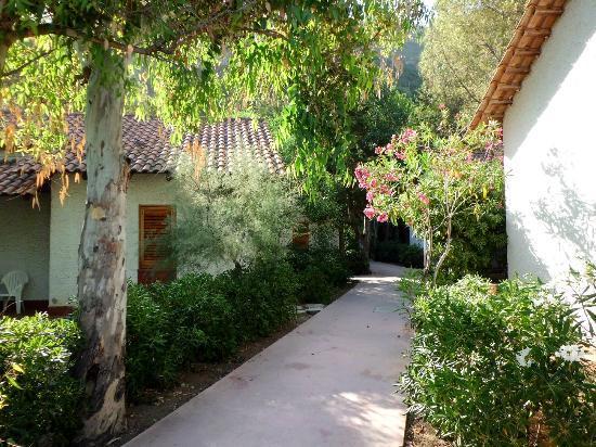 Club Valtur Capo Calava : Vegetazione