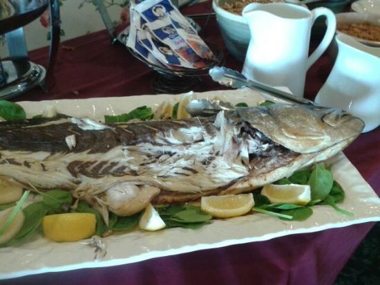 1661 Inn Restaurant: 1661 Blue fish