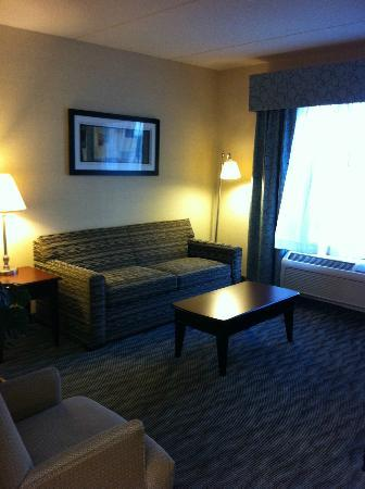 Hampton Inn & Suites Syracuse Erie Blvd/I-690: A Picture of the Seating Area