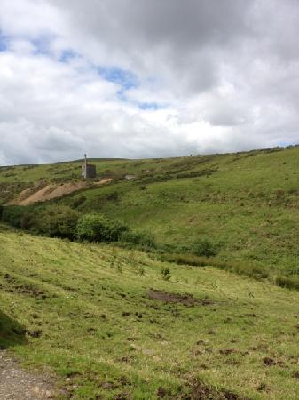 Cholwell Riding Stables: nearby tin mine