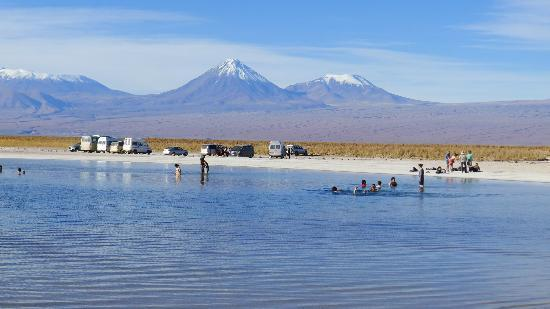 Casa Solcor Boutique Bed & Breakfast: Swimming in the Salt Ponds