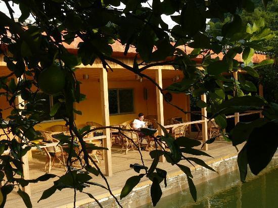 CTN Garden Hotel: Bar & Terrace