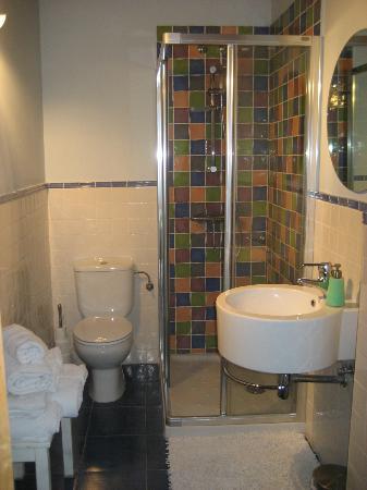 Hotel Arganzon PLAZA: Baño