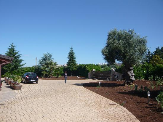 Le Bianche: Garten mit Zufahrt