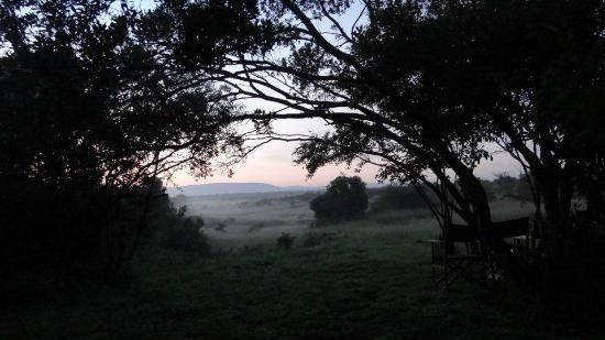 Encounter Mara, Asilia Africa: camp in the early morning