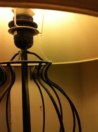 Bed & Breakfast Bahia di Buzios: le ragnatele