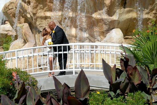 Tropicana Lv Weddings Waterfall