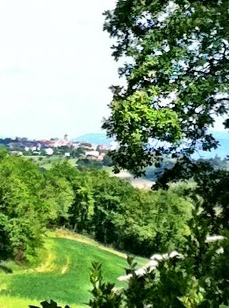 Cap de Castel : View of Puylaurens from the countryside hike
