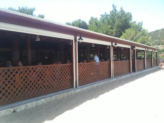 Ristorante Lido Delfino: struttura ristorante