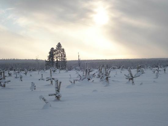 Original Sokos Hotel Kuusamo: Freezing Finland in February