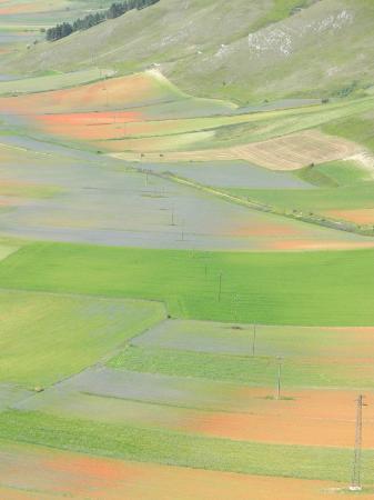 Monti Sibillini: Castelluccio di Norcia - Pian grande