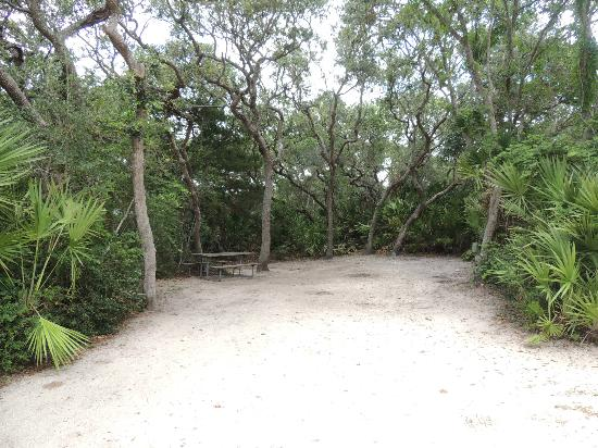 North Beach Camp Resort: Campsite at North Beach Campground near Ponte Vedre. Fl