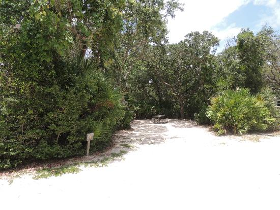 North Beach Camp Resort : Camp site at North Beach Camping Resort in St. Augustine, FL