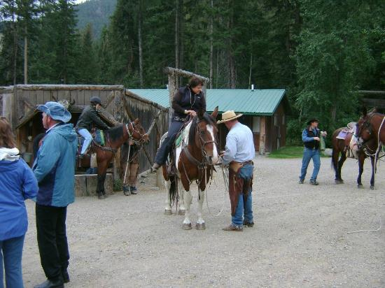 Mountain Sky Guest Ranch: Getting ready to ride. Note large Mounting Block for all of us short people!