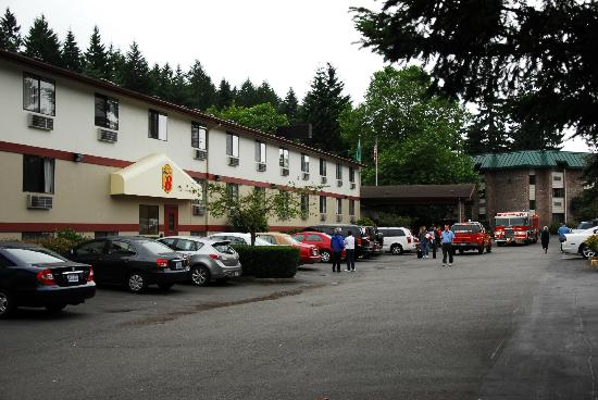 Super 8 Lacey/Olympia Area: View of the fire trucks outside of the hotel