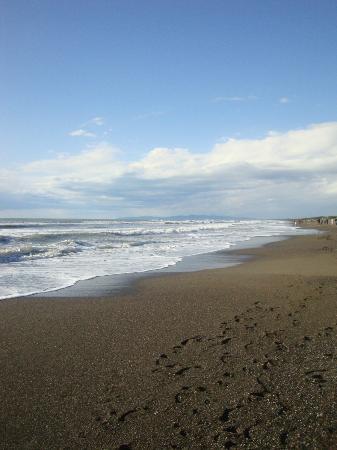 Podere Vignanova: La Spiaggia di Marina di Castagneto Carducci