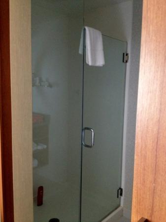 SpringHill Suites by Marriott Long Island Brookhaven: great walk in shower