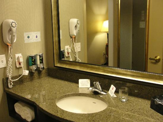 Comfort Inn & Suites Boston Logan International Airport: Bathroom