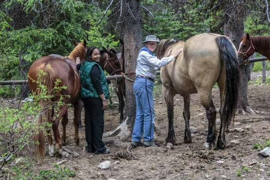 Early Winters Outfitting - Day Tours: Saddling up